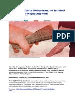 APIP IV.doc