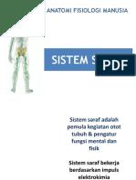sistem-saraf 1 (cns).ppt