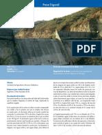 Ficha presa trigomil.pdf