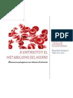 El Eritrocito y El Metabolismo Del Hierro-LAPTOP-7USECEL5