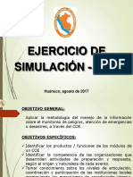 Coe Simulacion