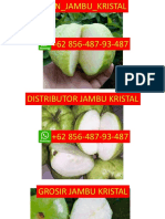 LANGSUNG DARI PETANI, NO WA 0856-487-93-487, Jambu Kristal Parigata