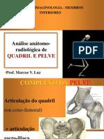 Imaginologia - Quadril, Pelve e Fêmur