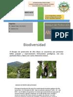 Biodiversidad Alto mayo.pptx