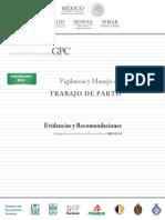 Guía_de_práctica_Clínica_vigilanca_y_manejo_del_trabajo_de_parto.pdf