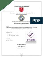 UNION DE PROYECTO.pdf