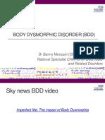 2. Benedetta Monzani - Body Dysmorphic Disorder (BDD)