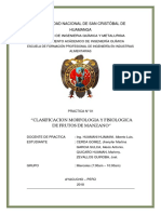 MANZANA-INFORME-1.docx