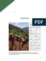 Puesta de procesadora de quinua.pdf
