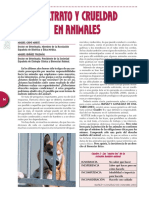 pobres mascotas.pdf