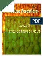 59281648 Fructe de Padure Partea 1