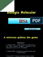 Biologia PPT - Molecular - DNA e RNA