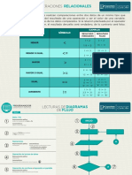 Programador infografias
