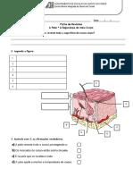5, Ficha de revisões - unidade 1 - II.pdf
