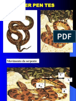 Biologia PPT - Serpentes
