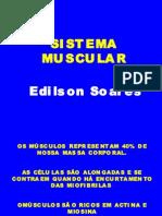 Biologia PPT - Sistema Muscular