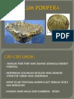 Phylum Porifera Februari 2012