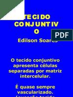 Biologia PPT - Tecido Conjuntivo