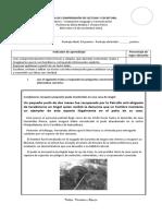 3°PRUEBA PIE DE COMPRENSIÓN DE LECTURA  Y ESCRITURA 14-11