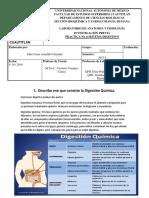 Previo 6 Sistema Digestivo(Humano)