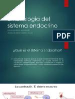 Embriologia_del_sistema_endocrino.pptx