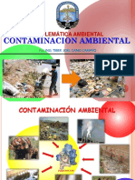 Clase N° 9,  Problematica ambiental (1)