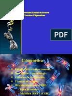 Tecnicas Citogeneticas