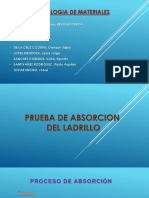 Absorcion Del Ladrillo