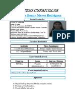 SINTESIS-CURRICULAR.-ROSMARY-NIEVES.docx