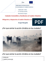 sergio_margulis_-_cepal-montevideo.pdf