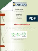 cinetica enzimatica