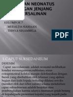 MERALDA TRESYA NEONATUS.pptx