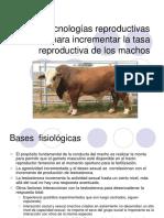 Biotecnologia Reprod Machos