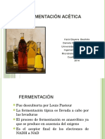 326042903-FERMENTACION-ACETICA.pdf