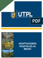 Unidad 6 Adaptaciones Vegetales 1
