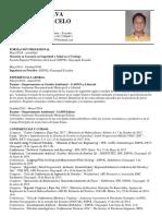 CV Jaramillo Sst