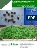 USO DE BIOFERTILIZANTES EN LA PRODUCCIÓNDE PLANTA DE PAPAYA MARADOL.pdf
