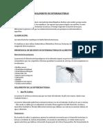 312042038-Aislamiento-de-Enterobacterias.docx