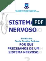 5. Sistema Nervoso