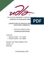 Condor Machay Salida de Campo1.0