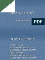 4. Nervous System