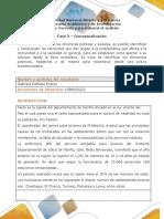 Analisis de La Problematica Gabriela Erasso