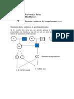 Resolución de Los Problemas de Genética Adicionales