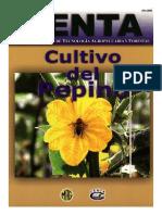 Guia Pepino 2003.pdf