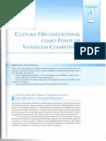 Capítulo_2_-_Gestão_do_Fator_Humano[1].pdf