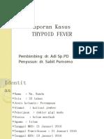 portofolio TIPOID