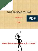 Comunicação Celular
