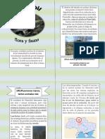 antologia flora y fauna.docx