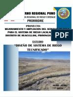 RIEGO TECNIFICADO LACALACA.docx