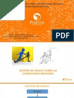 07. Inspecciones Planeadas.pdf